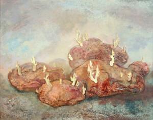 Картошка - новые ростки. 55 x 70 холст ,масло 2003
