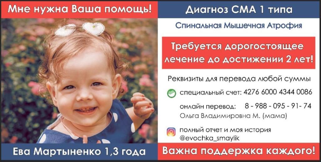 Благотворительный аукцион в поддержку Евы Мартыненко